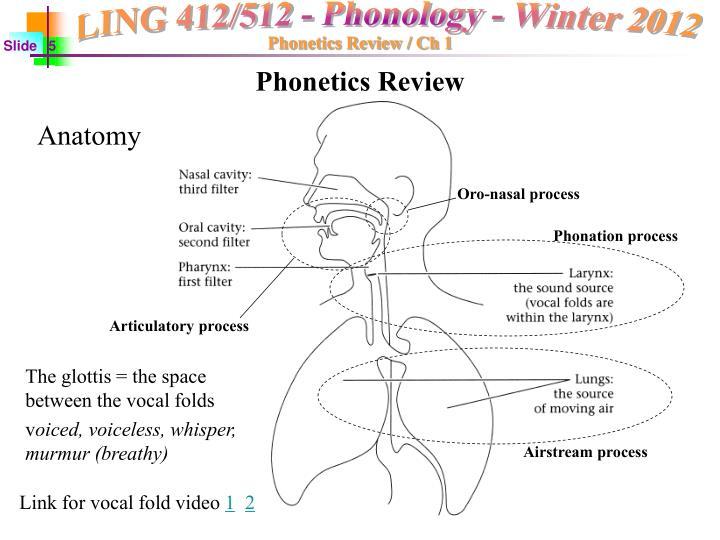 Phonetics Review