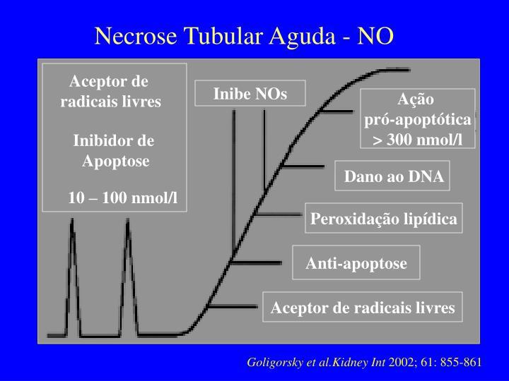Necrose Tubular Aguda - NO