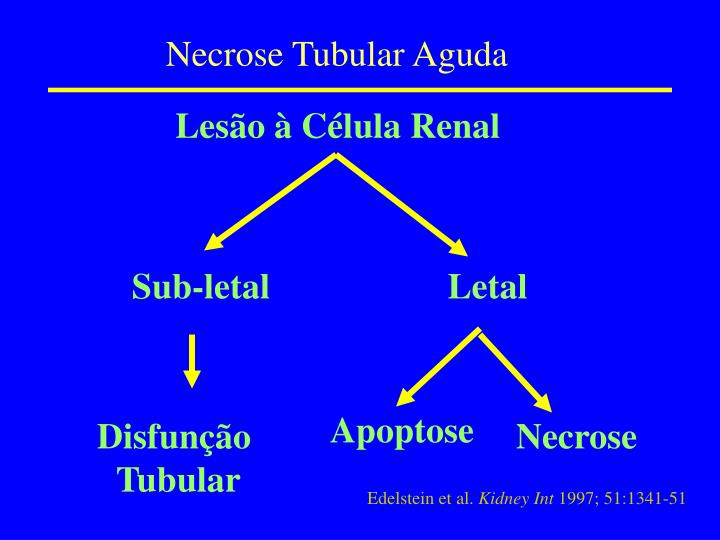 Necrose Tubular Aguda