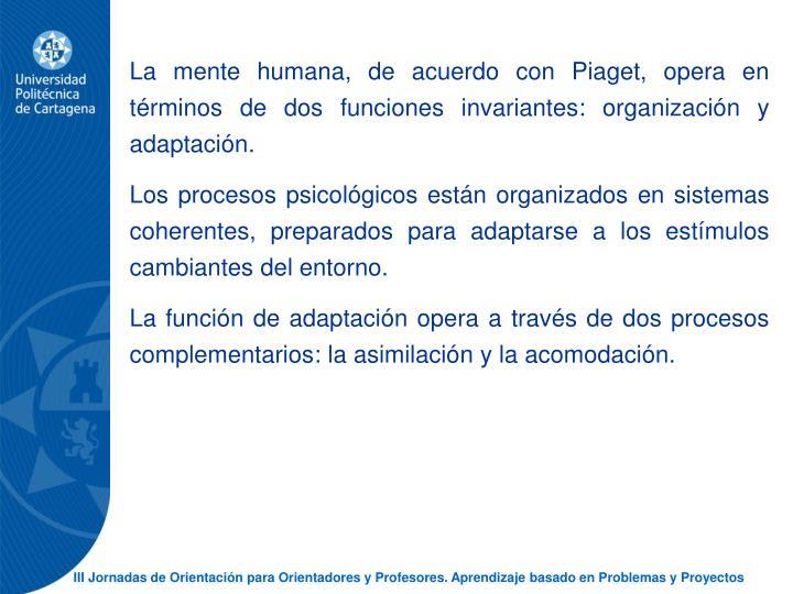 La mente humana, de acuerdo con Piaget, opera en trminos de dos funciones invariantes: organizacin y adaptacin.