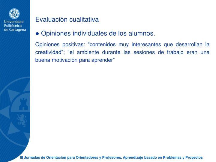 Evaluacin cualitativa