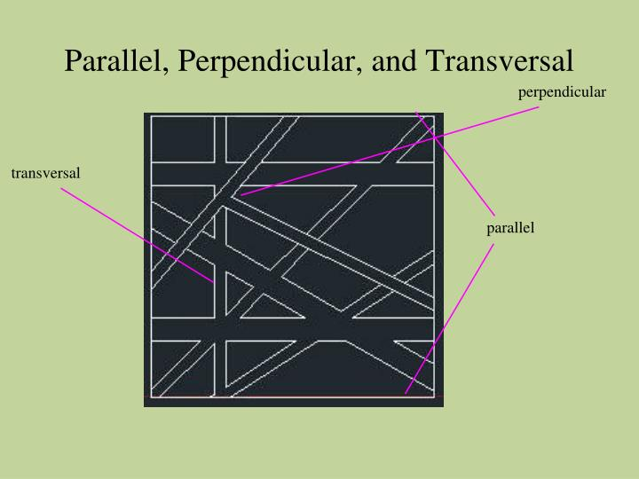 Parallel, Perpendicular, and Transversal
