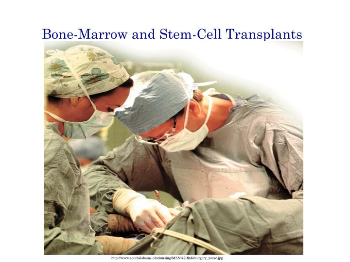 Bone-Marrow and Stem-Cell Transplants