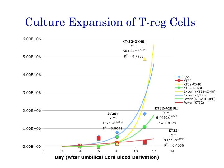 Culture Expansion of T-reg Cells