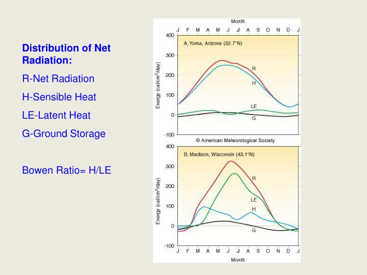 Distribution of Net Radiation: