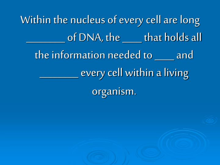Within the nucleus of every cell are long ________ of DNA, the ____ that holds all the information needed to ____ and ________ every cell within a living organism.
