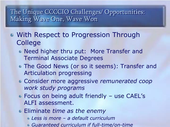 The Unique CCCCIO Challenges/ Opportunities: