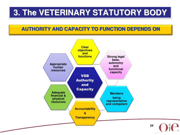 3. The VETERINARY STATUTORY BODY