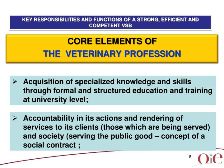 KEY RESPONSIBILITIES AND FUNCTIONS OF A STRONG, EFFICIENT AND COMPETENT VSB