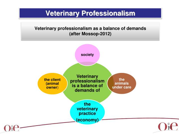 Veterinary Professionalism