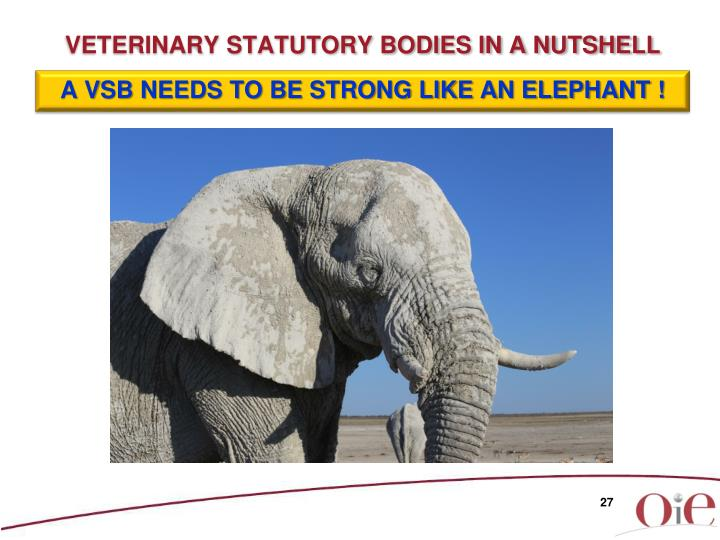 A VSB NEEDS TO BE STRONG LIKE AN ELEPHANT !