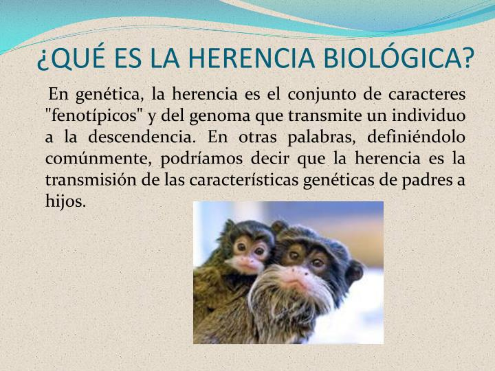 ¿QUÉ ES LA HERENCIA BIOLÓGICA?
