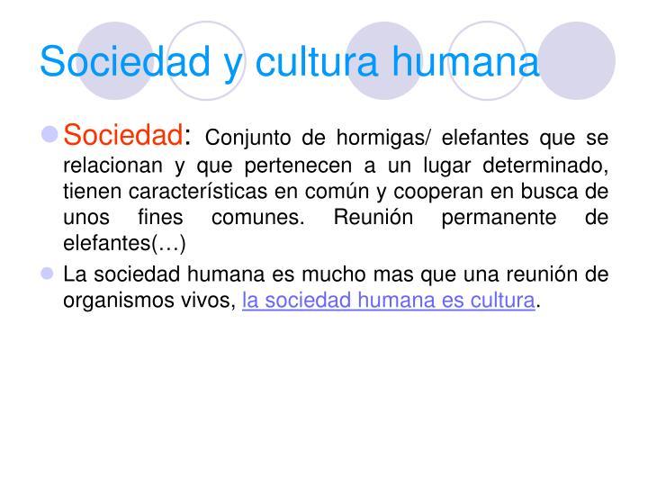 Sociedad y cultura humana
