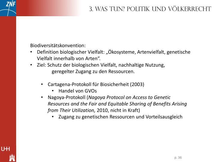 3. Was tun? Politik und Völkerrecht