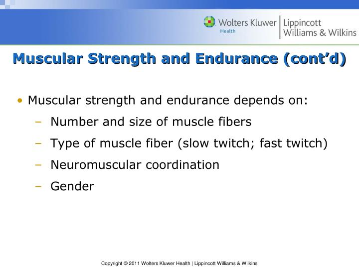 Muscular Strength and Endurance (cont'd)