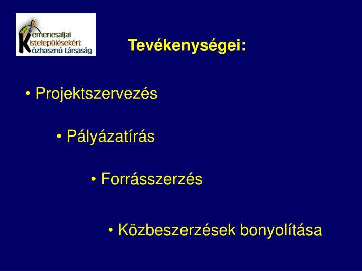 Tevkenysgei: