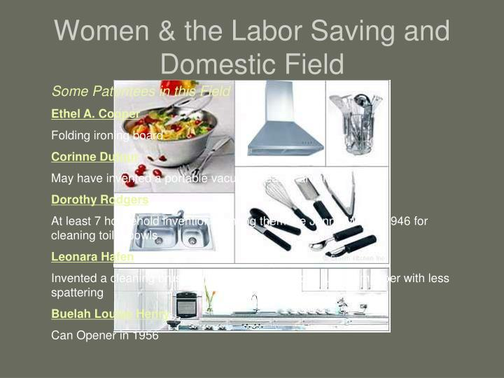 Women & the Labor Saving and Domestic Field