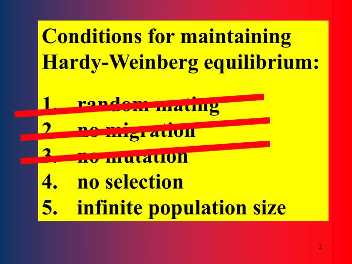 Conditions for maintaining Hardy-Weinberg equilibrium: