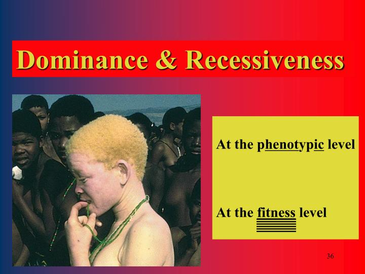 Dominance & Recessiveness