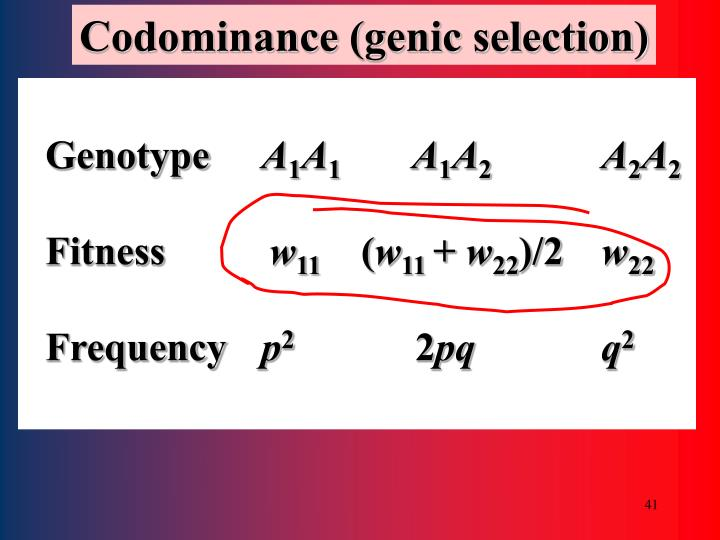Codominance (genic selection)