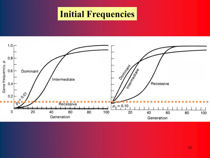 Initial Frequencies
