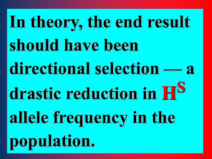 In theory, the end result should have been directional selection — a drastic reduction in