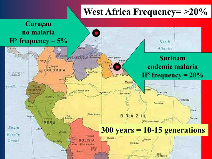 West Africa Frequency= >20%