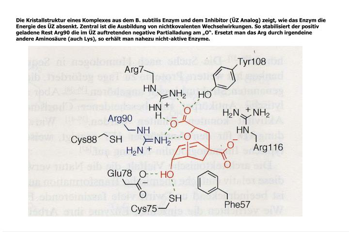 Die Kristallstruktur eines Komplexes aus dem B. subtilis Enzym und dem Inhibitor (ÜZ Analog) zeigt, wie das Enzym die