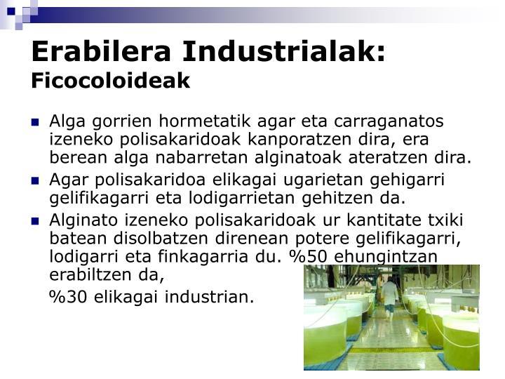 Erabilera Industrialak: