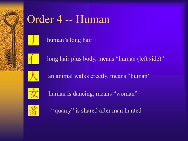 Order 4 -- Human