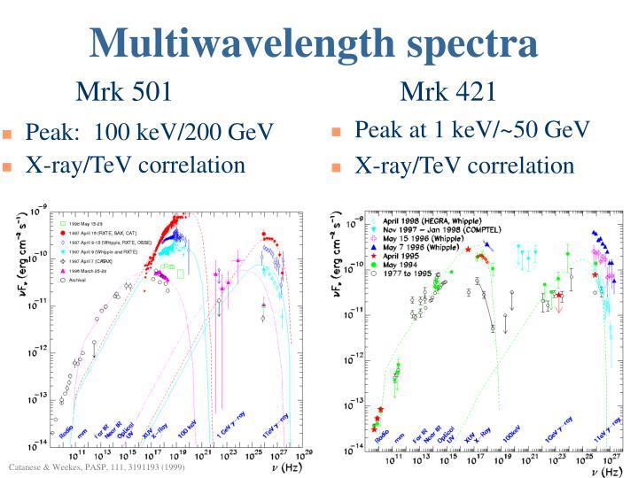 Multiwavelength spectra