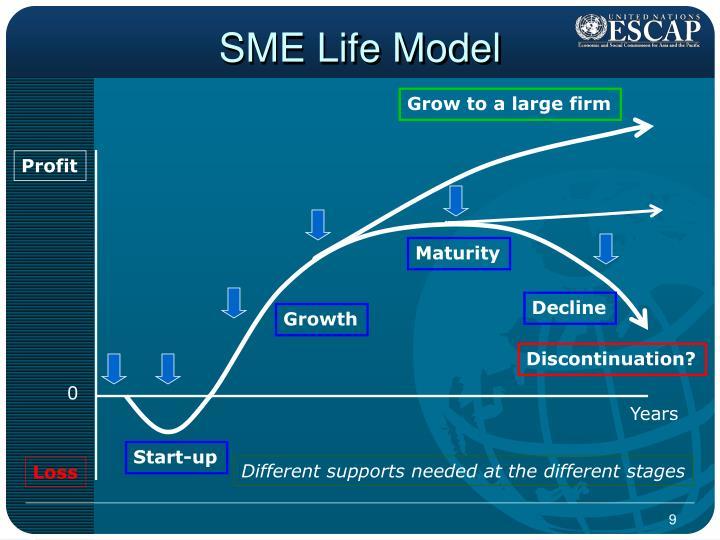 SME Life Model