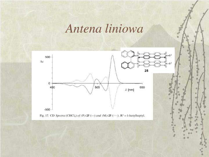 Antena liniowa