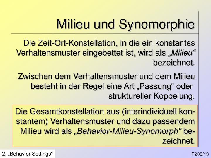 Milieu und Synomorphie