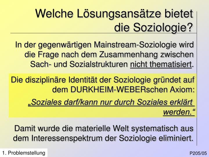 Welche Lösungsansätze bietet die Soziologie?