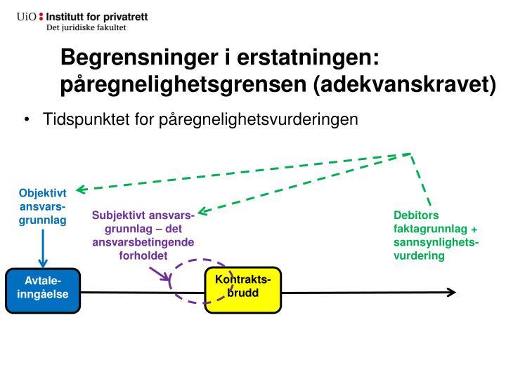 Begrensninger i erstatningen: påregnelighetsgrensen (adekvanskravet)