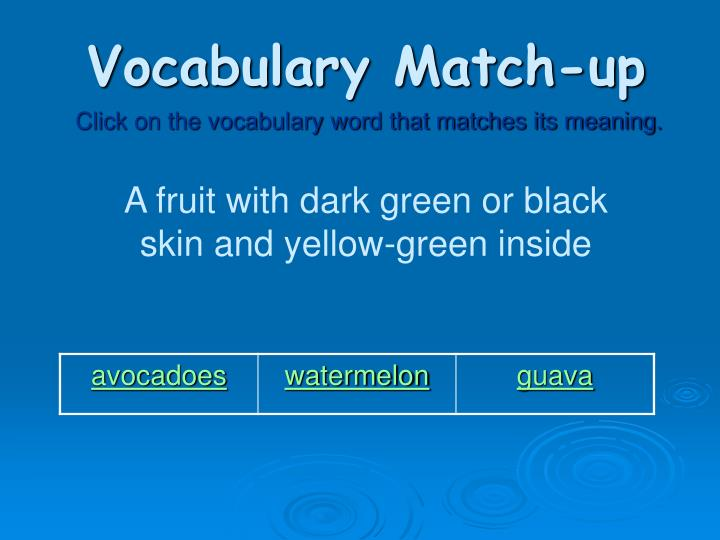 Vocabulary Match-up