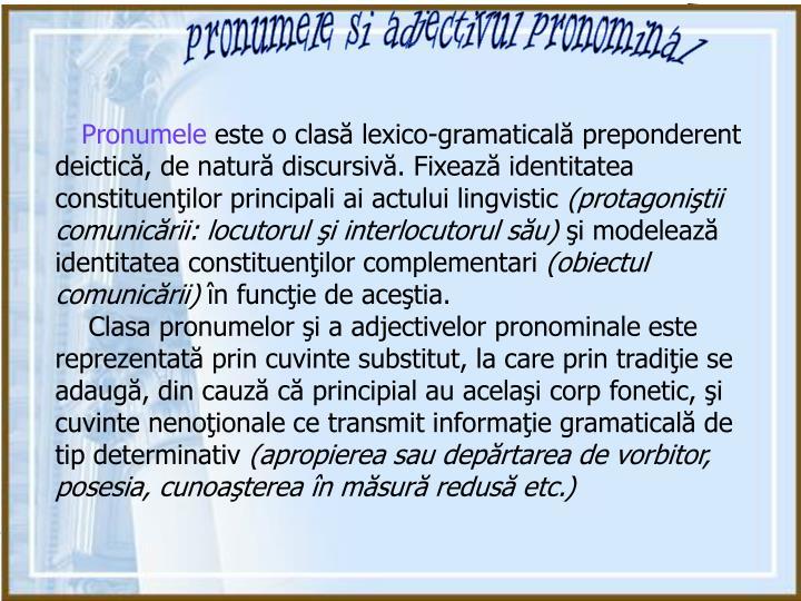 pronumele si adjectivul pronominal