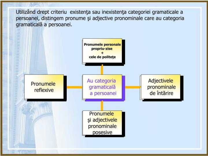 Utilizând drept criteriu  existenţa sau inexistenţa categoriei gramaticale a persoanei, distingem pronume şi adjective pronominale care au categoria gramaticală a persoanei.