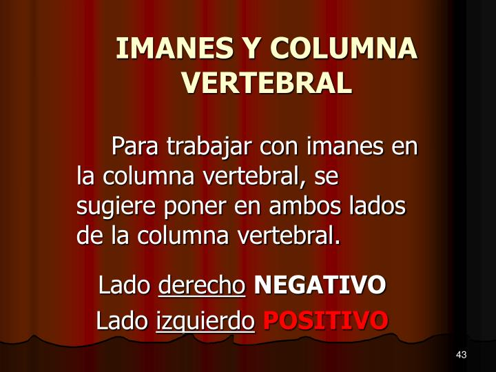 IMANES Y COLUMNA VERTEBRAL