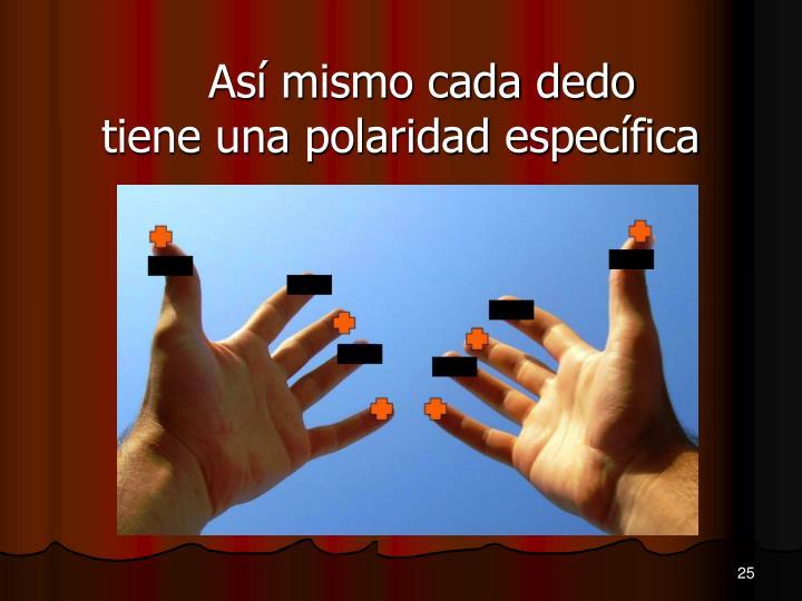 Así mismo cada dedo tiene una polaridad específica