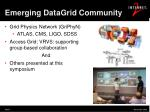 emerging datagrid community