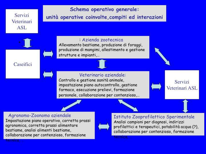 Schema operativo generale: