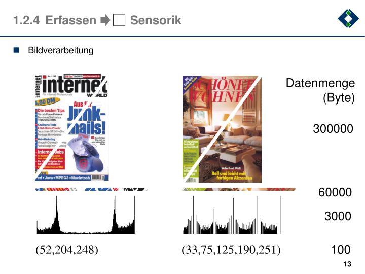 Datenmenge