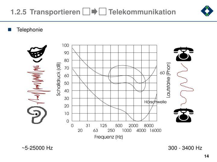 ~5-25000 Hz