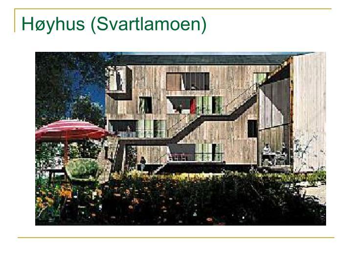 Høyhus (Svartlamoen)