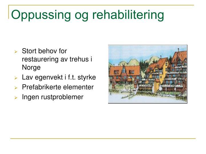 Oppussing og rehabilitering