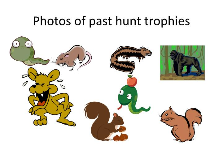 Photos of past hunt trophies