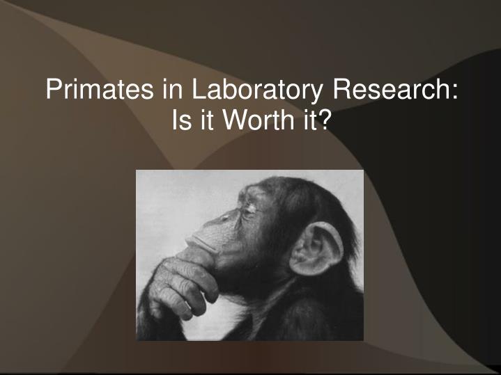 Primates in Laboratory Research: