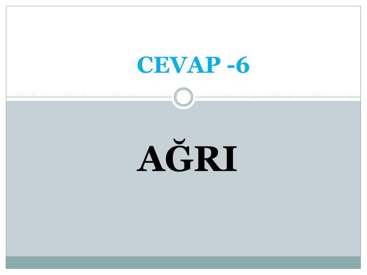 CEVAP -6